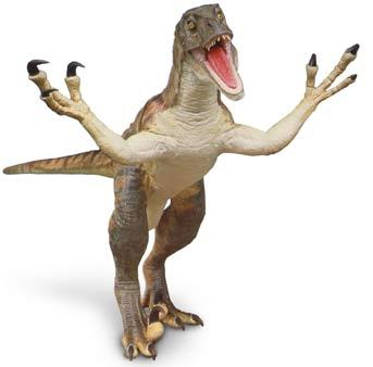 velociraptor_1.jpg
